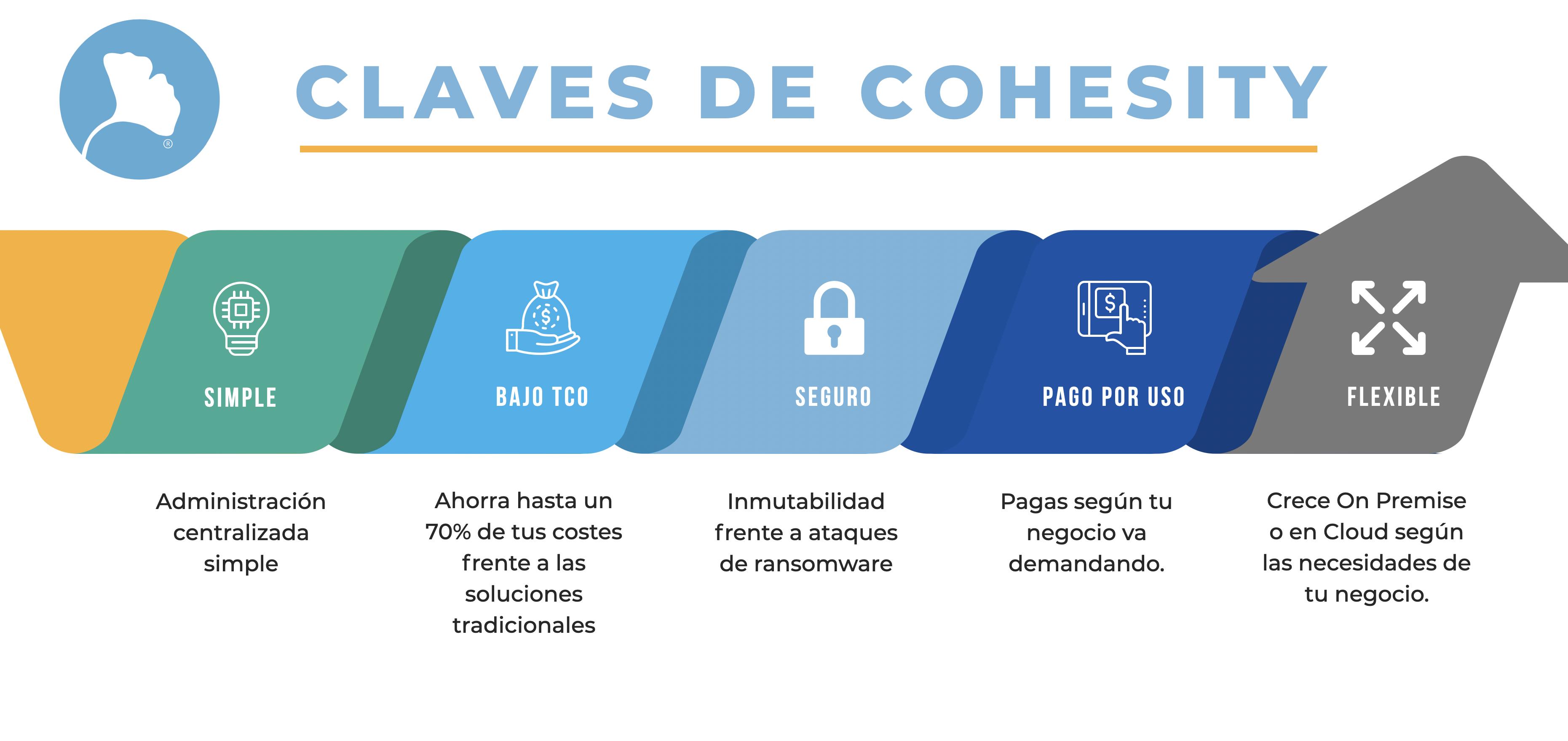 Infografía Cohesity Ncora